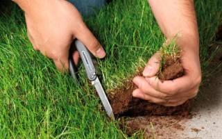Ответственность за самовольное занятие земельного участка