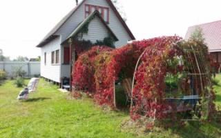 Дом в собственности как оформить землю в собственность