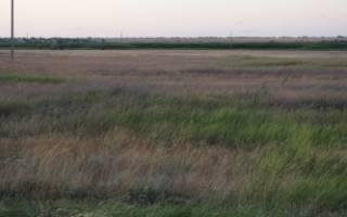 Договор субаренды земельного участка: скачать