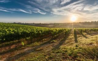 Право пожизненного наследуемого владения земельным участком