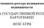 Расширенная выписка из ЕГРН о переходе прав