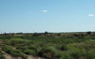 Договор аренды земельного участка с правом выкупа: образец
