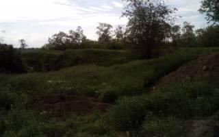 Приватизация земельного участка без построек