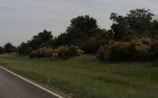 Внесение изменений в ЕГРН на земельный участок